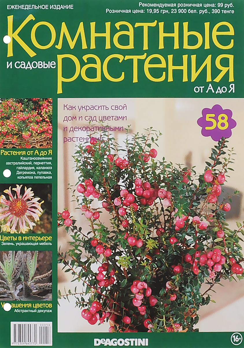 Журнал Комнатные и садовые растения. От А до Я №58 год до школы от а до я тетрадь по подготовке к школе