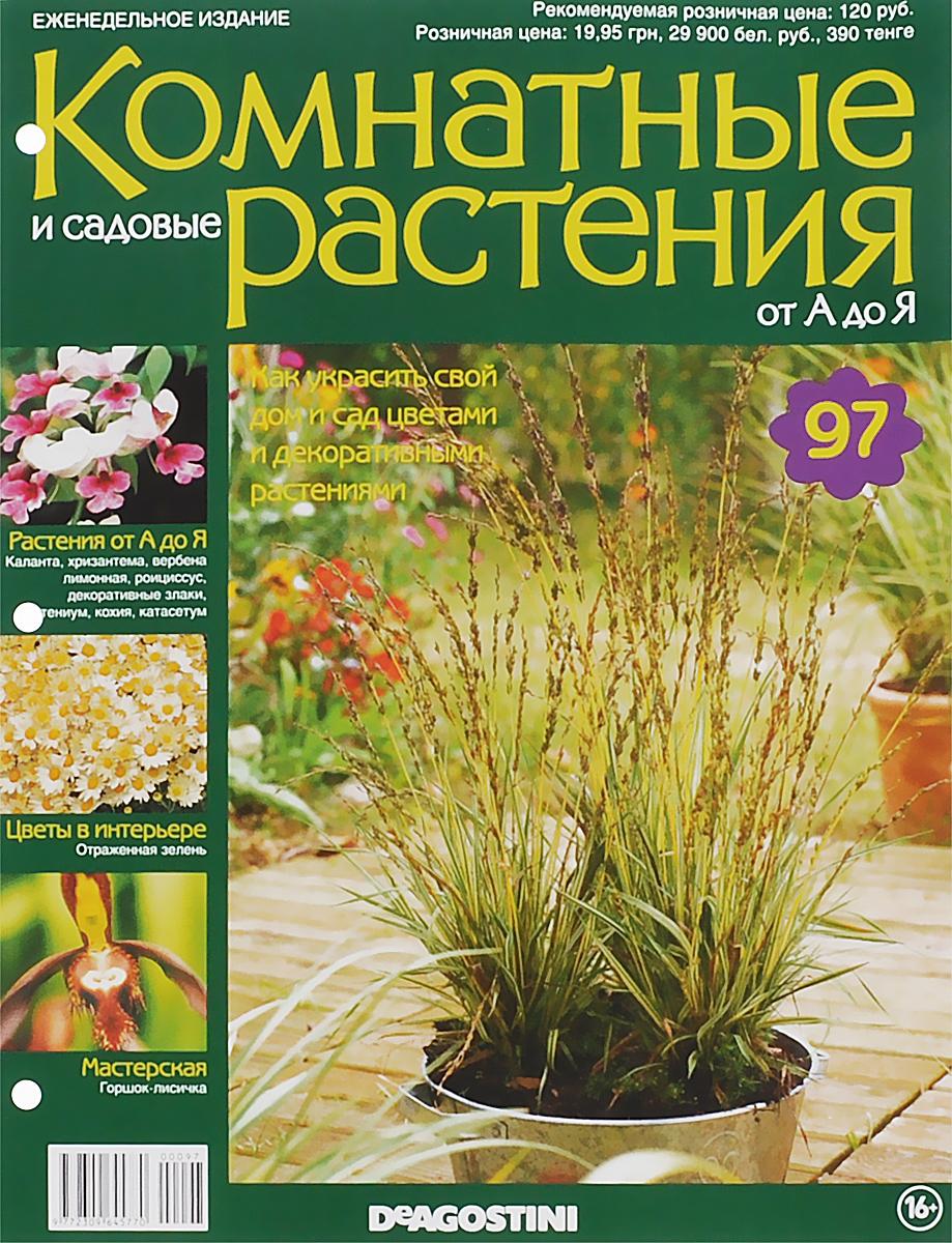 Журнал Комнатные и садовые растения. От А до Я №97 лесоповал я куплю тебе дом lp