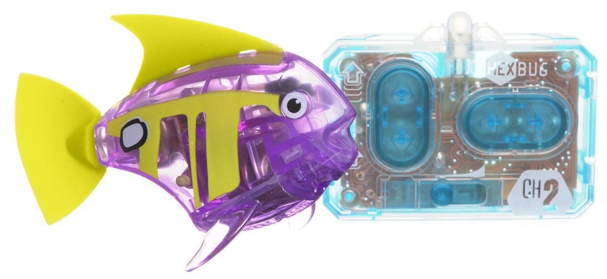 Zakazat.ru: Hexbug Микро-робот на радиоуправлении Рыба-ангел цвет фиолетовый