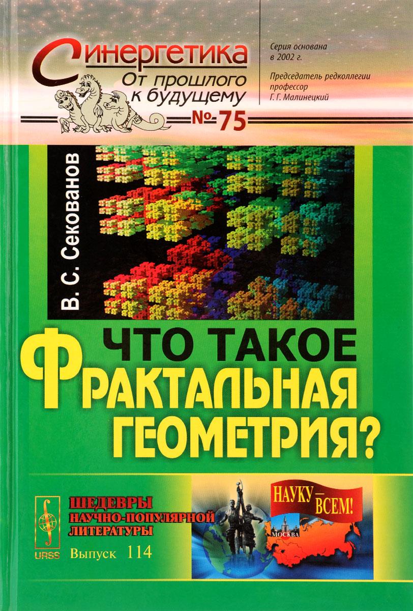 Что такое фрактальная геометрия?. В. С. Секованов