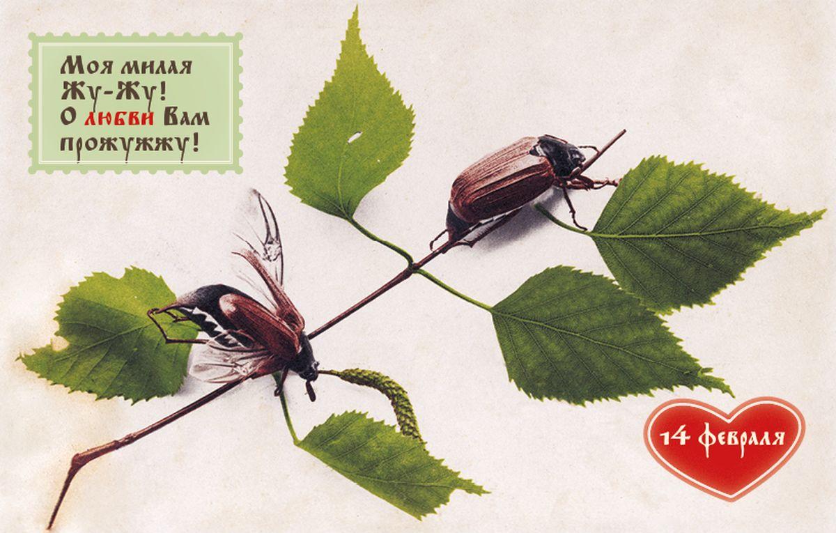 Поздравительная открытка в винтажном стиле 14 февраля, №261 театр сатиры билет 06 февраля