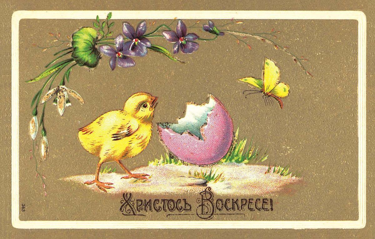 Поздравительная открытка в винтажном стиле Пасха. ОТКР №84ОТКР №84Оригинальная поздравительная открытка Пасха выполнена из плотного матового картона. На лицевой стороне расположено красочное изображение очаровательного цыпленка на фоне яичной скорлупки и цветов. Обратная сторона открытки имеет место для марки и свободное пространство, на котором вы сможете написать собственное послание. Необычная и яркая открытка в винтажном стиле поможет вам выразить чувства и передать теплые поздравления.Такая открытка станет великолепным дополнением к подарку или оригинальным почтовым посланием, которое, несомненно, удивит получателя своим дизайном и подарит приятные воспоминания.