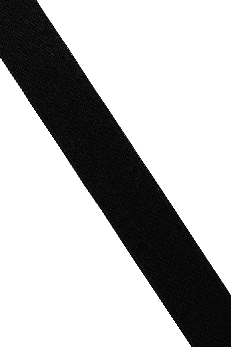 Лента атласная Prym, цвет: черный, ширина 15 мм, длина 25 м695803_0Атласная лента Prym изготовлена из 100% полиэстера. Область применения атласной ленты весьма широка. Изделие предназначено для оформления цветочных букетов, подарочных коробок, пакетов. Кроме того, она с успехом применяется для художественного оформления витрин, праздничного оформления помещений, изготовления искусственных цветов. Ее также можно использовать для творчества в различных техниках, таких как скрапбукинг, оформление аппликаций, для украшения фотоальбомов, подарков, конвертов, фоторамок, открыток и многого другого.Ширина ленты: 15 мм.Длина ленты: 25 м.