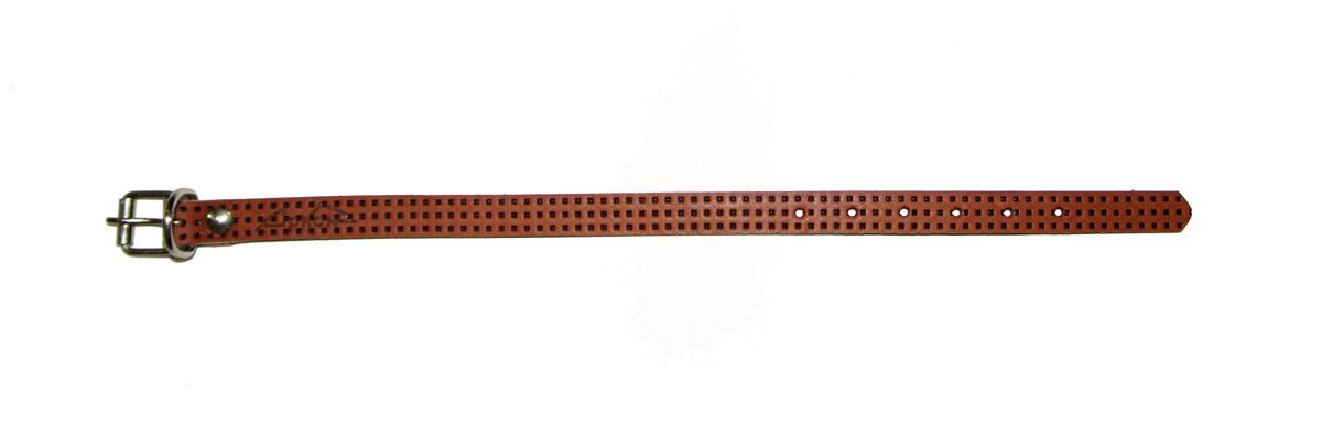 Ошейник Аркон, 14 мм, с тиснением F1, цвет: коньячный. о14фко14фкОшейники компании «Аркон» полностью отвечают требованиям современных мировых кинологических стандартов. Все ошейники выполнены из лучшей шорно-седельной кожи, устойчивой к влажности и перепадам температур. Клеевой слой, сверхпрочные нити, крепкие металлические элементы делают ошейники от компании «Аркон» еще более надежными и долговечными