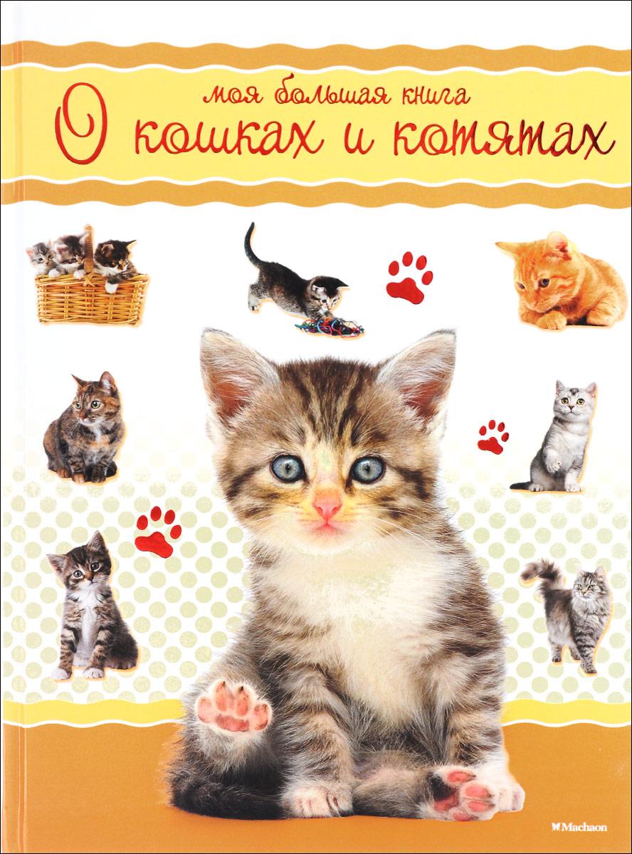 Моя большая книга о кошках и котятах бологова в моя большая книга о животных 1000 фотографий