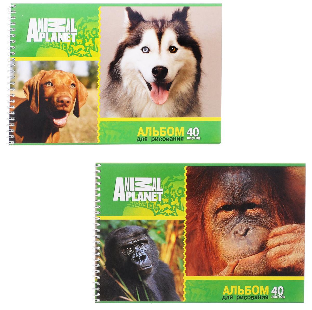 Action! Набор альбомов для рисования Собаки и обезьяны 40 листов 2 шт альбом для рисования action animal planet на гребне 40 листов в ассортименте