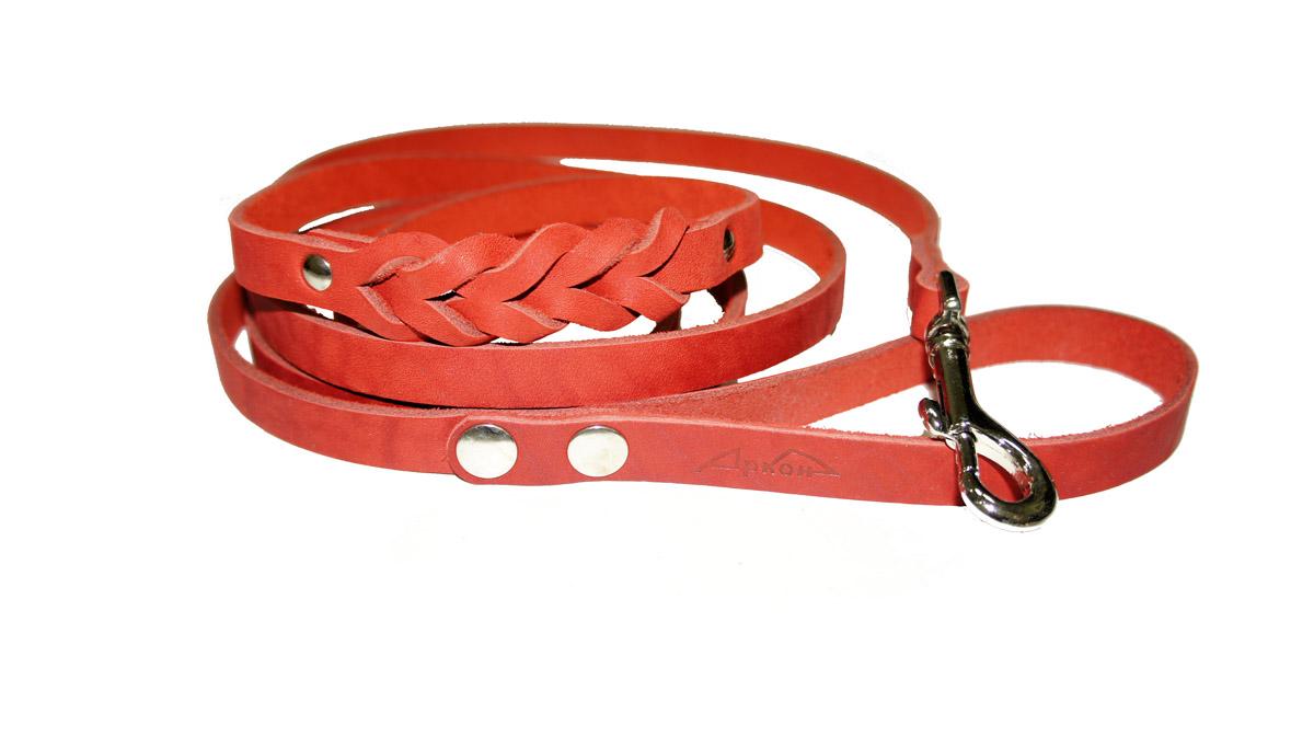 Поводок для собак Аркон Стандарт, цвет: красный, ширина 1,4 см, длина 250 смп14дкрПоводок для собак Аркон Стандарт изготовлен из высококачественной натуральной кожи и украшен декором в виде плетения. Карабин выполнен из легкого сверхпрочного сплава. Изделие отличается не только исключительной надежностью и удобством, но и привлекательным современным дизайном.Поводок - необходимый аксессуар для собаки. Ведь в опасных ситуациях именно он способен спасти жизнь вашему любимому питомцу. Иногда нужно ограничивать свободу своего четвероногого друга, чтобы защитить его или себя от неприятностей на прогулке. Длина поводка: 250 см.Ширина поводка: 1,4 см.
