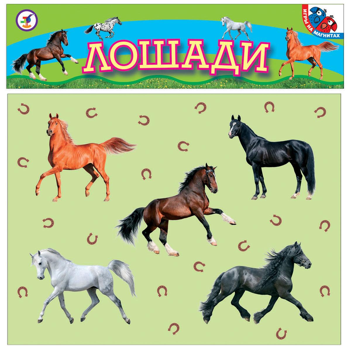 Дрофа-Медиа Игра на магнитах Лошади дрофа медиа магнит в коробке карточки с животными на магнитах