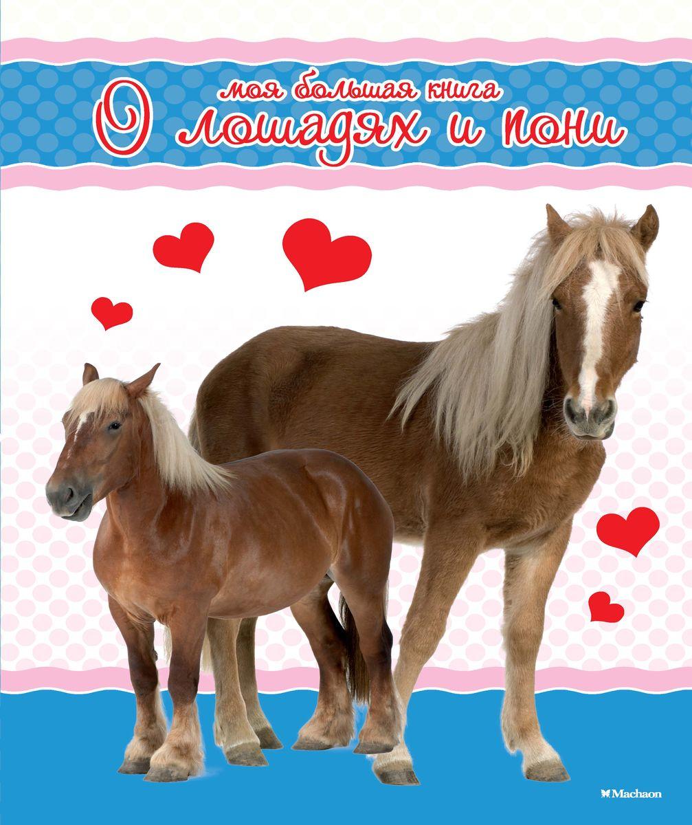 Моя большая книга о лошадях и пони махаон моя большая книга о лошадях и пони