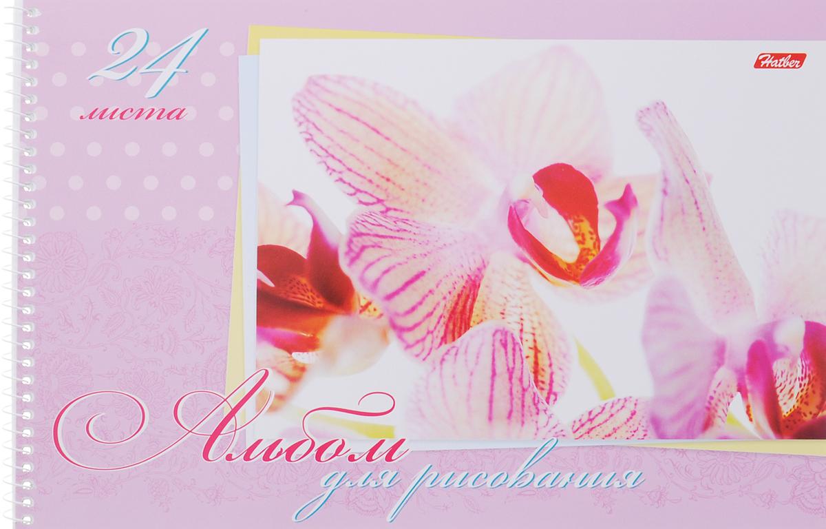 Hatber Альбом для рисования Нежность 24 листа цвет розовый