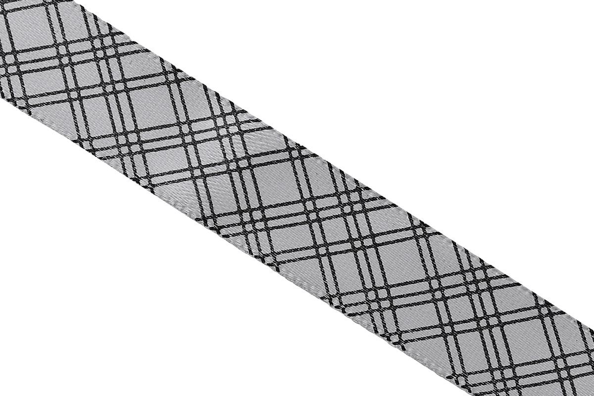 Лента атласная Dekor Line Пересечение, цвет: светло-серый, черный, 1,5 х 300 см7710553_серыйАтласная лента Dekor Line Пересечение выполнена из высококачественного полиэстера. Область применения атласной ленты весьма широка. Лента предназначена для оформления цветочных букетов, подарочных коробок, пакетов. Кроме того, она с успехом применяется для художественного оформления витрин, праздничного оформления помещений, изготовления искусственных цветов. Ее также можно использовать для творчества в различных техниках, таких как скрапбукинг, оформление аппликаций, для украшения фотоальбомов, подарков, конвертов, фоторамок, открыток и прочего.Ширина ленты: 1,5 см.Длина ленты: 3 м.