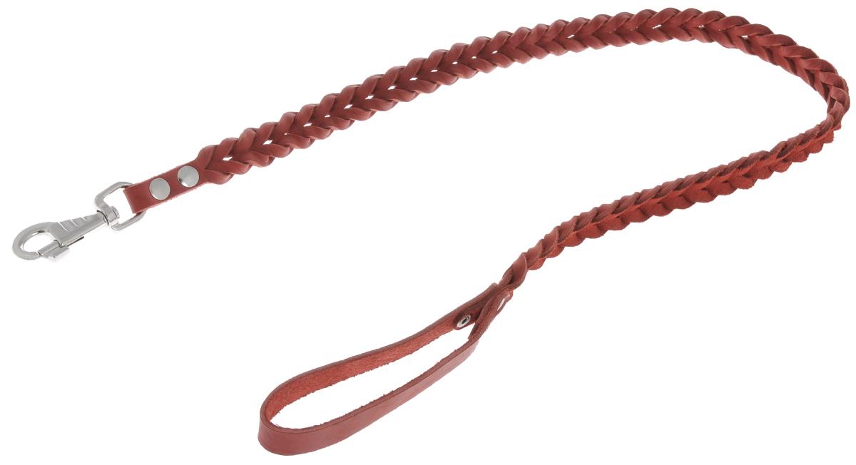 Поводок для собак Аркон Плетенка, цвет: красный, ширина 2,6 см, длина 120 смпл16крПоводок для собак Аркон Плетенка изготовлен из высококачественной натуральной кожи в виде плетения. Карабин выполнен из легкого сверхпрочного сплава. Изделие отличается не только исключительной надежностью и удобством, но и привлекательным современным дизайном.Поводок - необходимый аксессуар для собаки. Ведь в опасных ситуациях именно он способен спасти жизнь вашему любимому питомцу. Иногда нужно ограничивать свободу своего четвероногого друга, чтобы защитить его или себя от неприятностей на прогулке. Длина поводка: 120 см.Ширина поводка: 2,6 см.