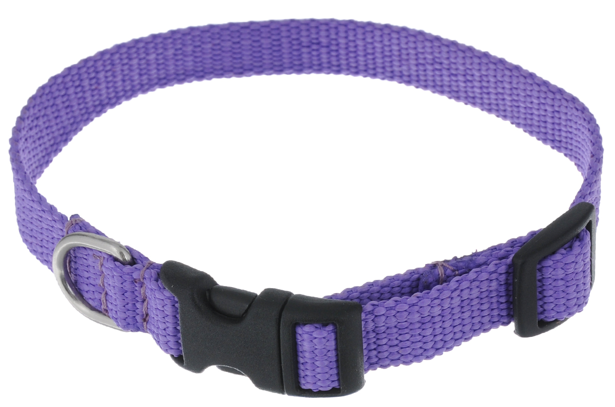 Ошейник Аркон Капрон, цвет: фиолетовый, ширина 1,5 см, длина 24-38 смок15Ошейник Аркон Капрон изготовлен из высококачественного цветного капрона и закрывается на пластиковую защелку. Изделие отличается не только высоким качеством, удобством и универсальностью, но и привлекательным современным дизайном.Иногда нужно ограничивать свободу своего четвероногого друга, чтобы защитить его или себя от неприятностей на прогулке. Длина ошейника: 24-38 см.Ширина ошейника: 1,5 см.