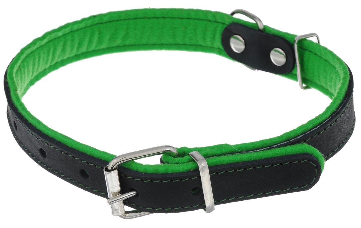 Ошейник для собак Аркон Фетр, цвет: зеленый, черный, ширина 2,5 см, длина 57 смоф25зОшейник Аркон Фетр изготовлен из высококачественной натуральной кожи, устойчивой к влажности и перепадам температур, и фетра. Мягкий фетр предотвратит натирание шеи собаки ошейником и позволит ей с комфортом наслаждаться прогулкой. Размер ошейника регулируется с помощью металлической пряжки, которая фиксируется на одном из 6 отверстий изделия. Ошейник отличается высоким качеством, удобством и универсальностью.Минимальный обхват шеи: 35 см. Максимальный обхват шеи: 49 см. Ширина: 2,5 см.