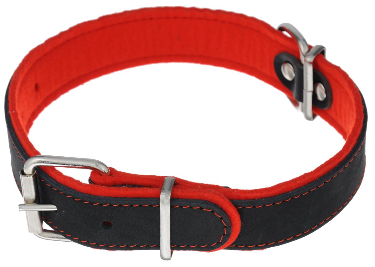 Ошейник Аркон Фетр, цвет: черный, красный, ширина 3,5 см, длина 61 см. оф35оф35кОшейник Аркон Фетр изготовлен из высококачественной натуральной кожи, устойчивой к влажности и перепадам температур, и фетра. Мягкий фетр предотвратит натирание шеи собаки ошейником и позволит ей с комфортом наслаждаться прогулкой.Клеевой слой, сверхпрочные нити, крепкие металлические элементы делают ошейник надежным и долговечным.Изделие отличается высоким качеством, удобством и универсальностью.Размер ошейника регулируется при помощи пряжки, зафиксированной на одном из 6 отверстий. Минимальный обхват шеи: 41 см. Максимальный обхват шеи: 55 см. Ширина: 3,5 см.
