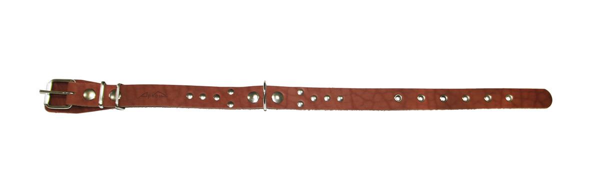 Ошейник Аркон Стандарт, цвет: коньячный, ширина 2,5 см, длина 58 см. о25о25кОшейник Аркон Стандарт изготовлен из кожи, устойчивой к влажности и перепадам температур. Клеевой слой, сверхпрочные нити, крепкие металлические элементы делают ошейник надежным и долговечным.Изделие отличается высоким качеством, удобством и универсальностью.Размер ошейника регулируется при помощи пряжки, зафиксированной на одном из 6 отверстий. Минимальный обхват шеи: 37 см. Максимальный обхват шеи: 52 см. Ширина: 2,5 см.