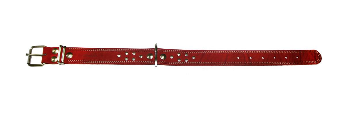 Ошейник Аркон Стандарт, цвет: красный, ширина 3,5 см, длина 62 см. о35ко35ккрОшейник Аркон Стандарт изготовлен из натуральной кожи, устойчивой к влажности и перепадам температур. Клеевой слой, сверхпрочные нити, крепкие металлические элементы делают ошейник надежным и долговечным.Изделие отличается высоким качеством, удобством и универсальностью.Размер ошейника регулируется при помощи пряжки, зафиксированной на одном из 6 отверстий. Минимальный обхват шеи: 41 см. Максимальный обхват шеи: 56 см. Ширина: 3,5 см.