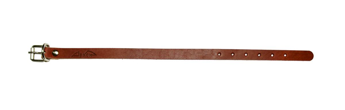 Ошейник для собак Аркон Стандарт, цвет: коньячный, ширина 1,4 см, длина 32 см. о14/1о14/1кОшейник для собак Аркон Стандарт изготовлен из кожи, устойчивой к влажности и перепадам температур. Клеевой слой, сверхпрочные нити, крепкие металлические элементы делают ошейник надежным и долговечным.Изделие отличается высоким качеством, удобством и универсальностью.Размер ошейника регулируется при помощи пряжки, зафиксированной на одном из 6 отверстий. Минимальный обхват шеи: 21 см. Максимальный обхват шеи: 29 см. Ширина: 1,4 см.