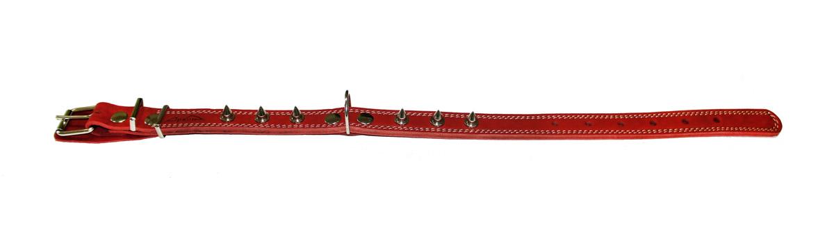 Ошейник Аркон Стандарт, с шипами, цвет: красный, ширина 2,5 см, длина 71 смо25/2дшкрОшейник Аркон Стандарт, декорированный металлическими шипами, изготовлен из кожи, устойчивой к влажности и перепадам температур. Клеевой слой, сверхпрочные нити, крепкие металлические элементы делают ошейник надежным и долговечным.Изделие отличается высоким качеством, удобством и универсальностью.Размер ошейника регулируется при помощи пряжки, зафиксированной на одном из 7 отверстий. Минимальный обхват шеи: 48 см. Максимальный обхват шеи: 65 см. Ширина: 2,5 см.м