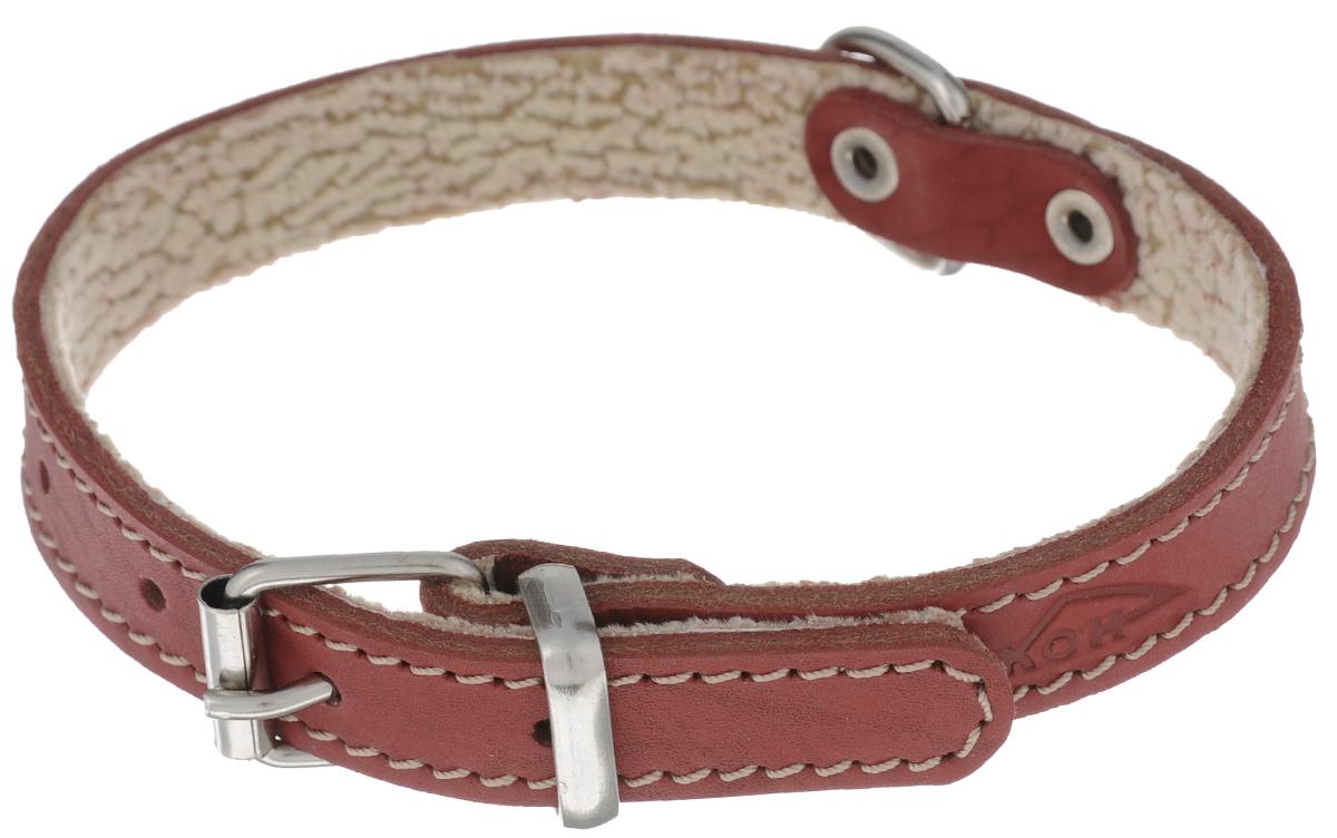 Ошейник Аркон Стандарт, цвет: красный, ширина 1,6 см, длина 36 см. о16по16пкрОшейник Аркон Стандарт изготовлен из кожи, устойчивой к влажности и перепадам температур. Клеевой слой, сверхпрочные нити, крепкие металлические элементы делают ошейник надежным и долговечным. На стороне, соприкасающейся с шеей, имеется подклад из мягкой ткани.Изделие отличается высоким качеством, удобством и универсальностью.Размер ошейника регулируется при помощи пряжки, зафиксированной на одном из 5 отверстий. Минимальный обхват шеи: 25 см. Максимальный обхват шеи: 33 см. Ширина: 1,6 см.