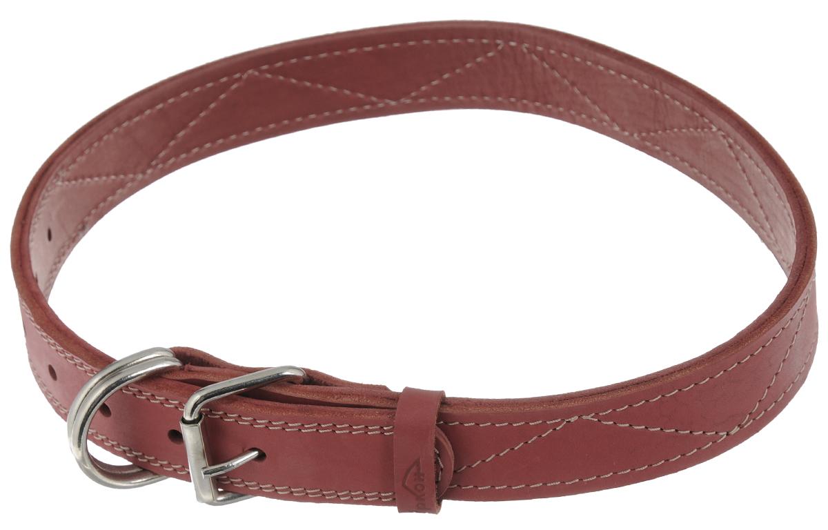 Ошейник Аркон Стандарт, цвет: красный, ширина 3,5 см, длина 87 см. о35/3д комплект для собак аркон стандарт 7 цвет красный 2 предмета