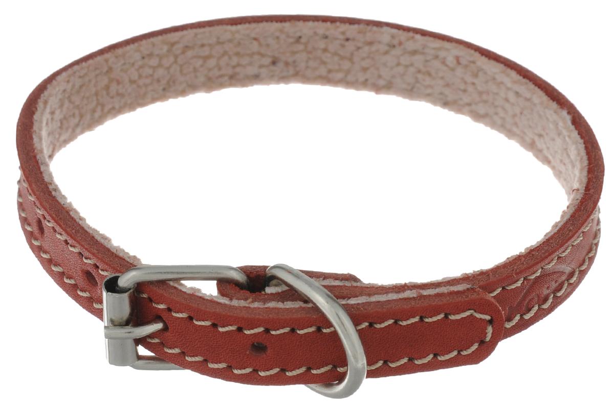 Ошейник для собак Аркон Стандарт, цвет: красный, ширина 1,4 см, длина 32 см. о14по14пкрОшейник Аркон Стандарт изготовлен из кожи, устойчивой к влажности и перепадам температур. Клеевой слой, сверхпрочные нити, крепкие металлические элементы делают ошейник надежным и долговечным. На стороне, соприкасающейся с шеей, имеется подклад из мягкой ткани.Изделие отличается высоким качеством, удобством и универсальностью.Размер ошейника регулируется при помощи пряжки, зафиксированной на одном из 6 отверстий. Минимальный обхват шеи: 24 см. Максимальный обхват шеи: 32 см. Ширина: 1,4 см.