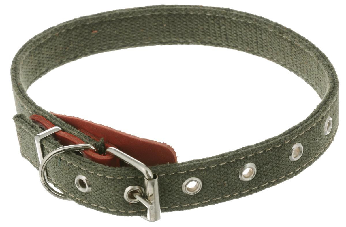 Ошейник для собак Аркон Брезент, цвет: красный, хаки, ширина 2,5 см, длина 60,5 см. о25