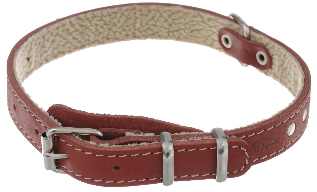Ошейник для собак Аркон Стандарт, цвет: красный, ширина 2 см, длина 49 см ошейник удавка для собак аркон стандарт цвет черный у16плч