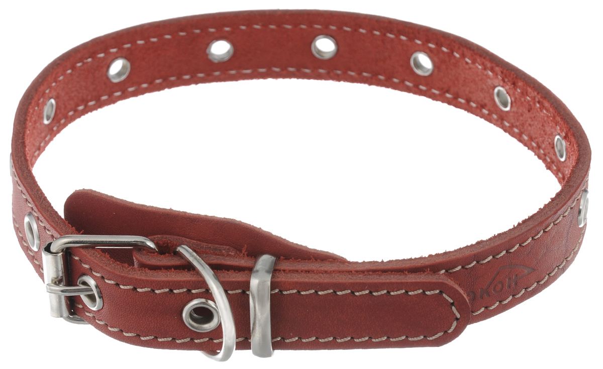 Ошейник для собак Аркон Стандарт, цвет: красный, ширина 2 см, длина 50 см. о20ун ошейник для собак аркон фетр цвет красный черный ширина 2 см длина 27 39 см