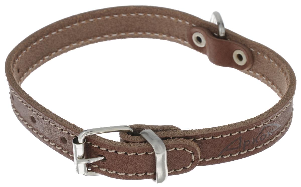 Ошейник для собак Аркон Стандарт, цвет: коньячный, ширина 1,6 см, длина 37 см. о16/1о16/1кОшейник для собак Аркон Стандарт изготовлен из металла и натуральной кожи, устойчивой к влажности и перепадам температур. Изделие оснащено петлей для крепления поводка.Ошейник отличается высоким качеством, удобством и универсальностью.Размер регулируется при помощи пряжки, зафиксированной на одном из 5 отверстий. Обхват шеи: 25 - 33 см. Ширина ошейника: 1,6 см.Длина ошейника: 37 см.