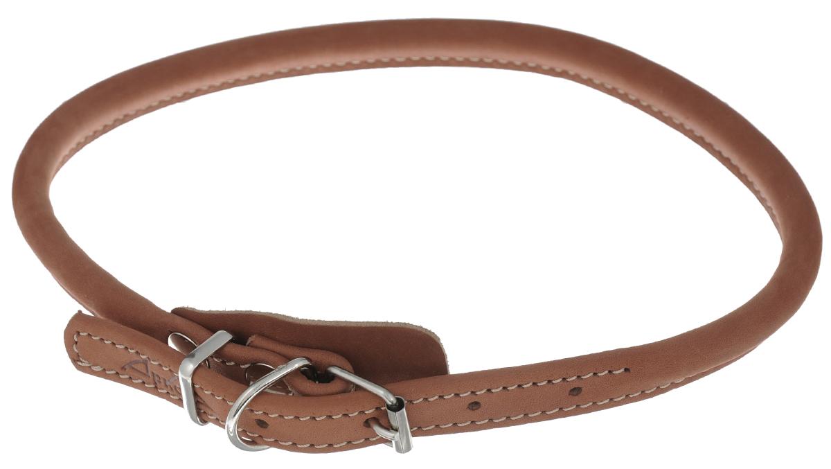 Ошейник для чау-чау Аркон Стандарт, цвет: коньячный, ширина 1,8, длина 71 см сворка для собак аркон стандарт цвет коньячный ширина 1 2 см длина 57 см