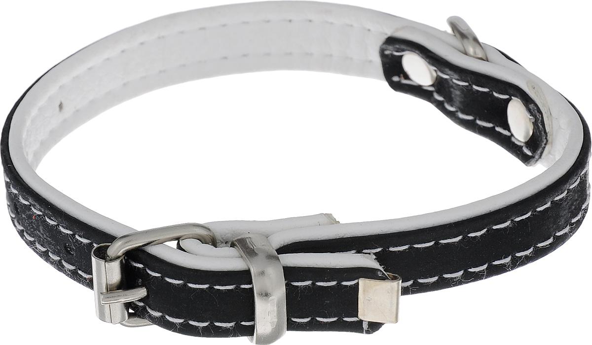 Ошейник для животных Аркон Техно, цвет: черный, белый, ширина 1,5 см, длина 33,5 см комплект для животных аркон техно цвет оранжевый белый 2 предмета кт37