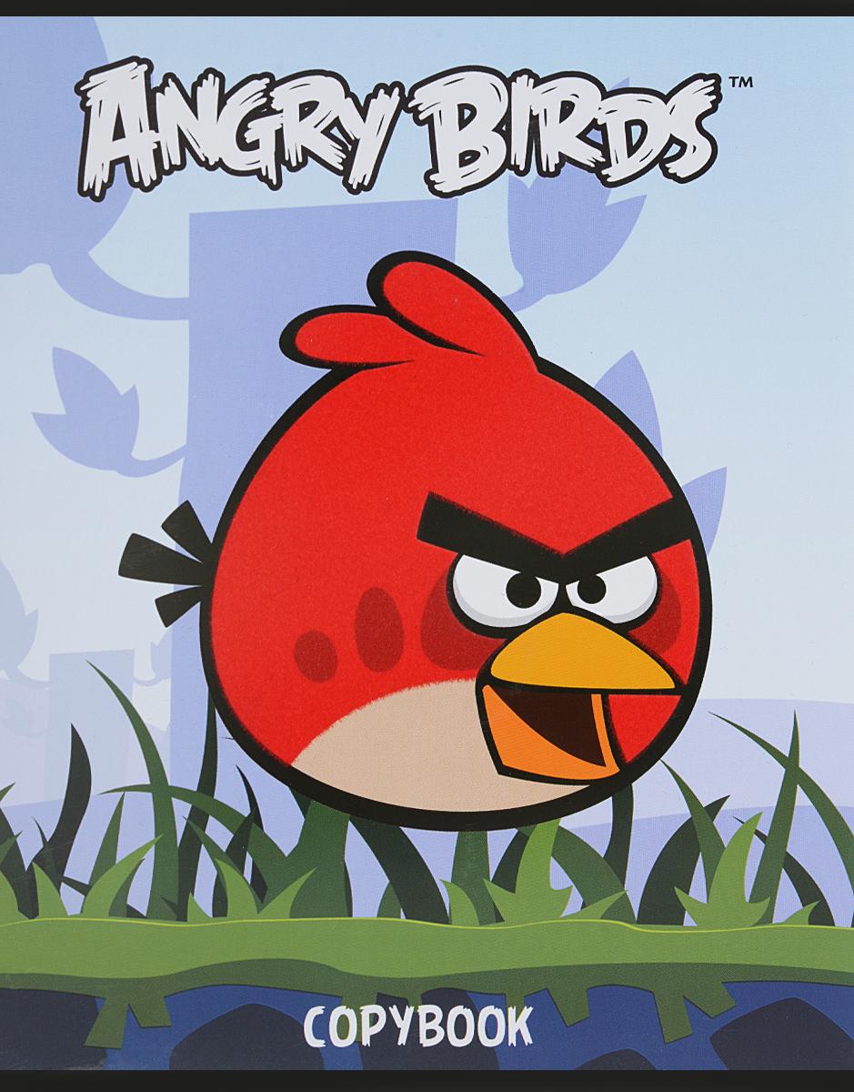 Hatber Тетрадь Angry Birds 48 листов в клетку цвет голубой48Т5флB1_10348Тетрадь Hatber Angry Birds отлично подойдет для занятий школьнику или студенту.Обложка, выполненная из плотного картона, позволит сохранить тетрадь в аккуратном состоянии на протяжении всего времени использования. Изделие оформлено бархатистым изображением злой птички.Внутренний блок тетради, соединенный скрепками, состоит из 48 листов белой бумаги в голубую клетку с полями.