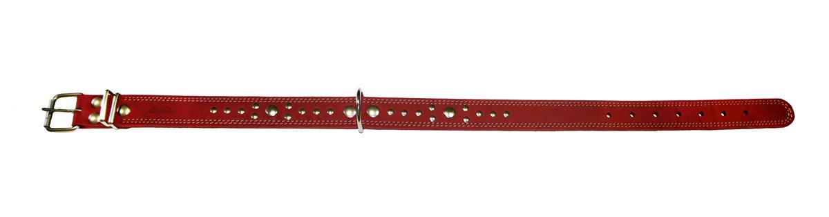 Ошейник Аркон Стандарт, цвет: красный, ширина 3,5 см, длина 81 смо35/2дкрОшейник Аркон Стандарт изготовлен из натуральной кожи, устойчивой к влажности и перепадам температур. Клеевой слой, сверхпрочные нити, крепкие металлические элементы делают ошейник надежным и долговечным.Изделие отличается высоким качеством, удобством и универсальностью.Размер ошейника регулируется при помощи пряжки, зафиксированной на одном из 7 отверстий. Минимальный обхват шеи: 58 см. Максимальный обхват шеи: 75 см. Ширина: 3,5 см.
