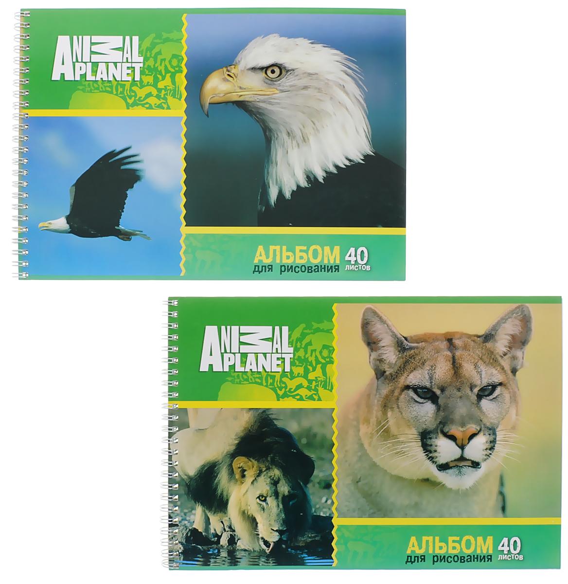 Action! Набор альбомов для рисования Орел и рысь 40 листов 2 шт нива рысь цена в украине б у