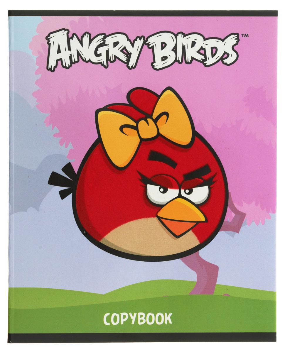 Hatber Тетрадь Angry Birds 48 листов в клетку цвет голубой розовый тетрадь hatber хатбер серия angry birds энгри бёрдз выпуск 4 клетка а5 48 листов флокированная обложка
