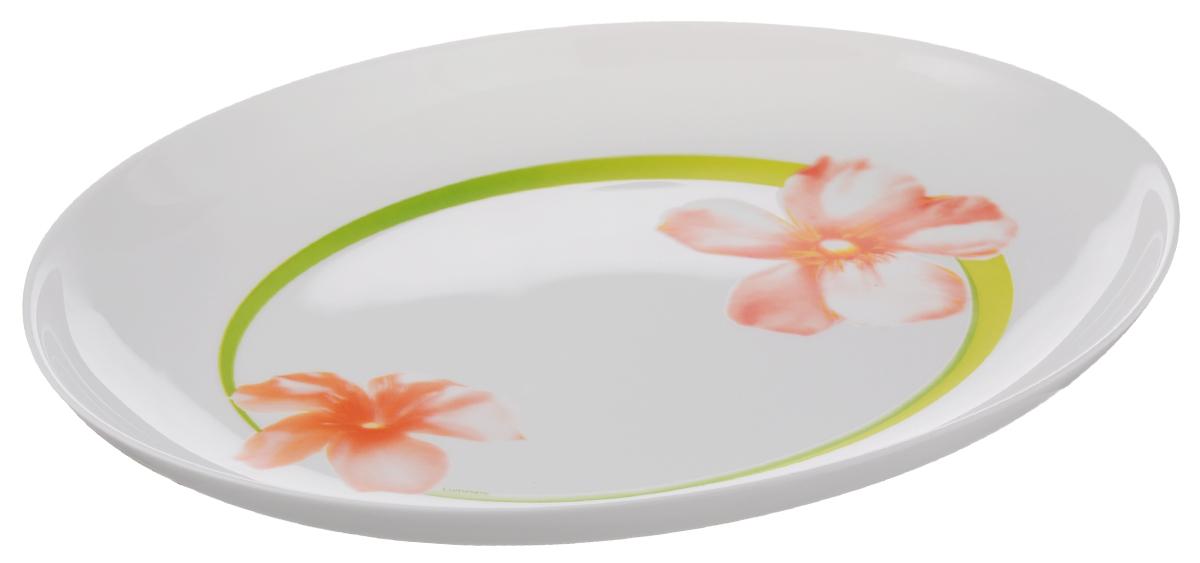 Блюдо Luminarc Sweet Impression, 33 х 25 смE5949Овальное блюдо Luminarc Sweet Impression изготовлено изударопрочного стекла и оформлено изящным цветочным рисунком. Оно доставит истинное удовольствие ценителям прекрасного. Яркий дизайн, несомненно, придется вам по вкусу. Размер блюда (по верхнему краю): 33 х 25 см.