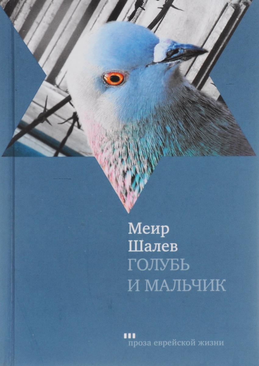 Меир Шалев Голубь и мальчик шоп голубь и ко обнинск
