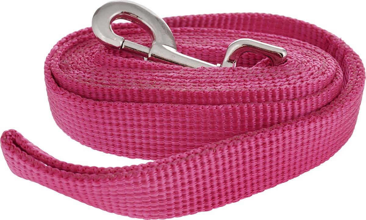 Поводок капроновый для собак Аркон, цвет: розовый, ширина 2,5 см, длина 1,5 мпк1,5м25_розовыйПоводок для собак Аркон изготовлен из высококачественного цветного капрона и снабжен металлическим карабином. Изделие отличается не только исключительной надежностью и удобством, но и привлекательным современным дизайном.Поводок - необходимый аксессуар для собаки. Ведь в опасных ситуациях именно он способен спасти жизнь вашему любимому питомцу. Иногда нужно ограничивать свободу своего четвероногого друга, чтобы защитить его или себя от неприятностей на прогулке. Длина поводка: 1,5 м.Ширина поводка: 2,5 см.