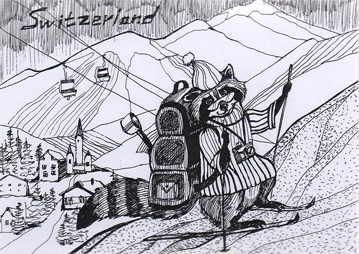 Дизайнерская открытка.  На лицевой стороне изображение енота на фоне Альп. Набросок, скетч.  Автор рисунка - Анастасия Панкова. Размер открытки: 10.5 х 15 см.