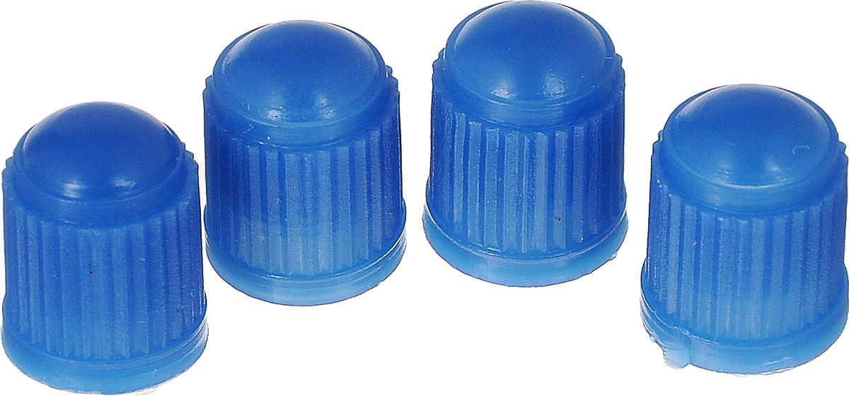 Набор синих пластиковых колпачков для ниппеля колеса МастерПрофАС.010011Колпачки пластиковые, защищают ниппель от грязи / воды и пыли. Имеют эстетический внешний вид. Цвет: синий.Упаковка: п/э блистер.