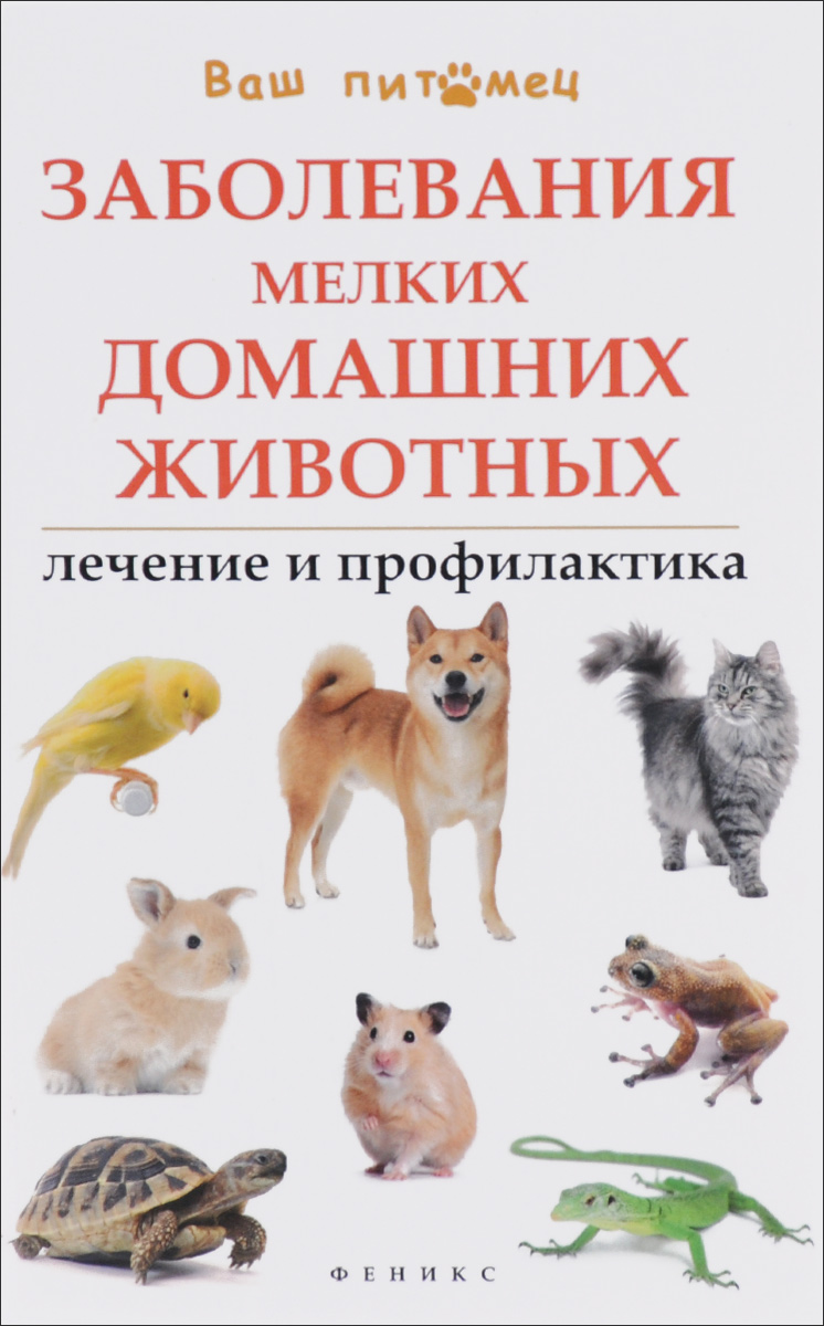 Л. С. Моисеенко Заболевания мелких домашних животных. Лечение и профилактика