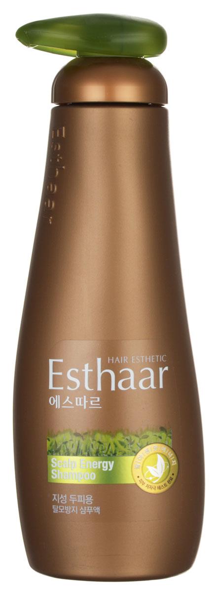 Esthaar Шампунь Контроль над потерей волос, для жирной кожи головы, 400 мл народные промыслы золотой шелк бальзам с репейным маслом контроль над потерей волос 170 мл 170 мл