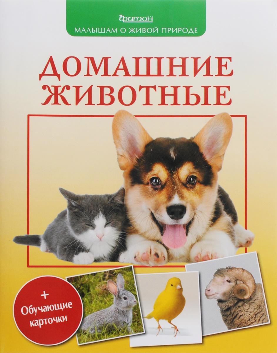 Купить Домашние животные (+ обучающие карточки)