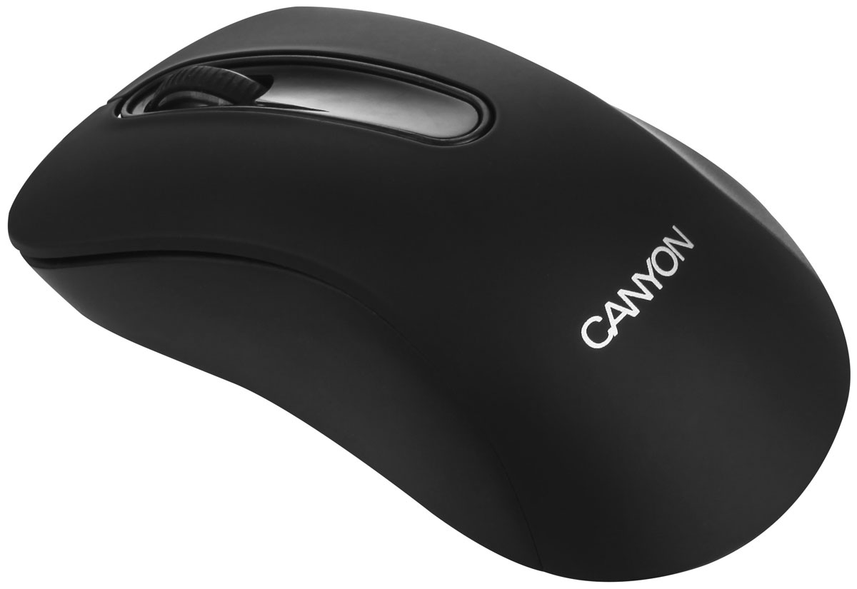 Canyon CNE-CMSW2, Black мышь веб камера canyon cne cwc2 черный серебристый