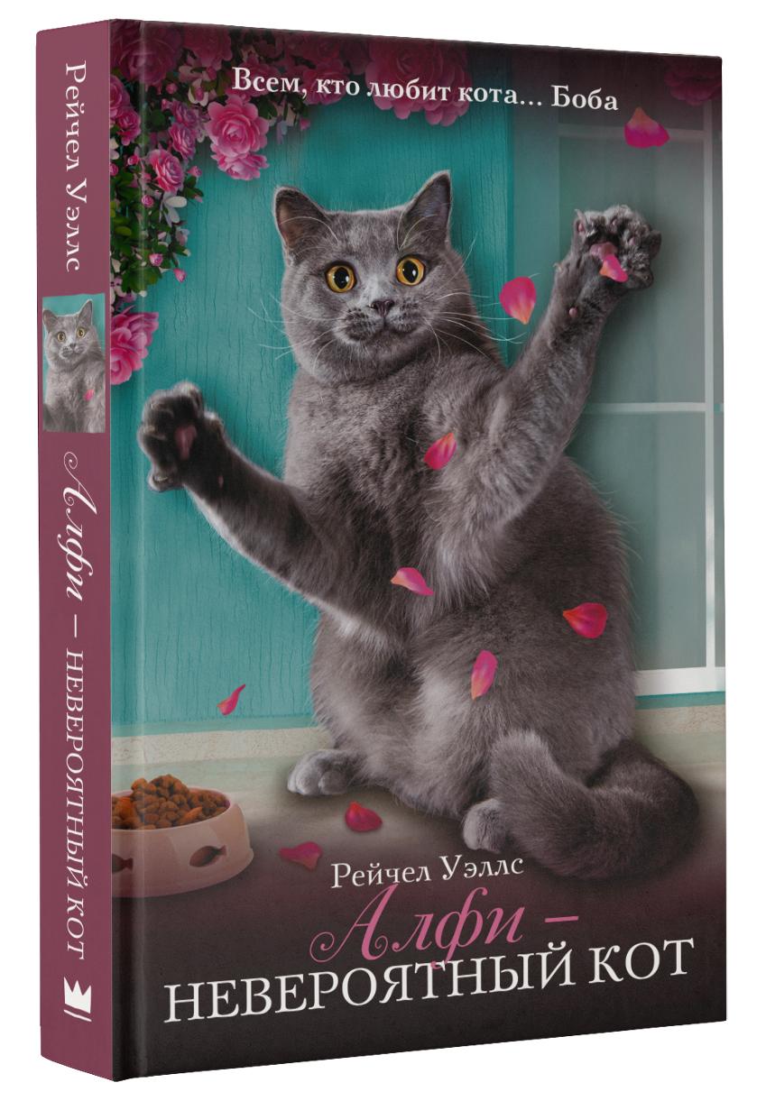 Рейчел Уэллс Алфи - невероятный кот ходит кот по горе