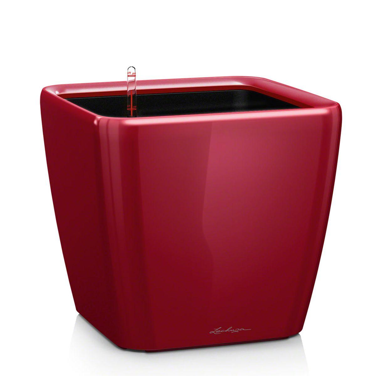 Кашпо Lechuza Quadro, с системой автополива, цвет: красный, 33 х 33 х 35 см16167Кашпо Lechuza Quadro, выполненное из высококачественного пластика, имеет уникальную систему автополива, благодаря которой корневая система растения непрерывно снабжается влагой из резервуара. Уровень воды в резервуаре контролируется с помощью специального индикатора. В зависимости от размера кашпо и растения воды хватает на 2-12 недель. Это способствует хорошему росту цветов и предотвращает переувлажнение.В набор входит: кашпо, внутренний горшок, индикатор уровня воды, вал подачи воды, субстрат растений в качестве дренажного слоя, резервуар для воды.Кашпо Lechuza Quadro прекрасно впишется в любой интерьер. Оно поможет расставить нужные акценты и придаст помещению вид, соответствующий вашим представлениям.