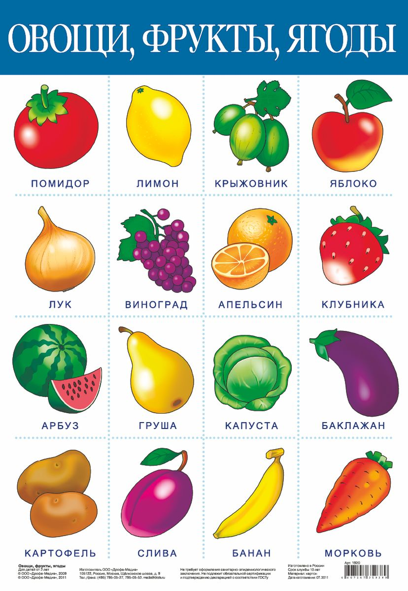 Дрофа-Медиа Обучающий плакат Овощи фрукты дрофа медиа