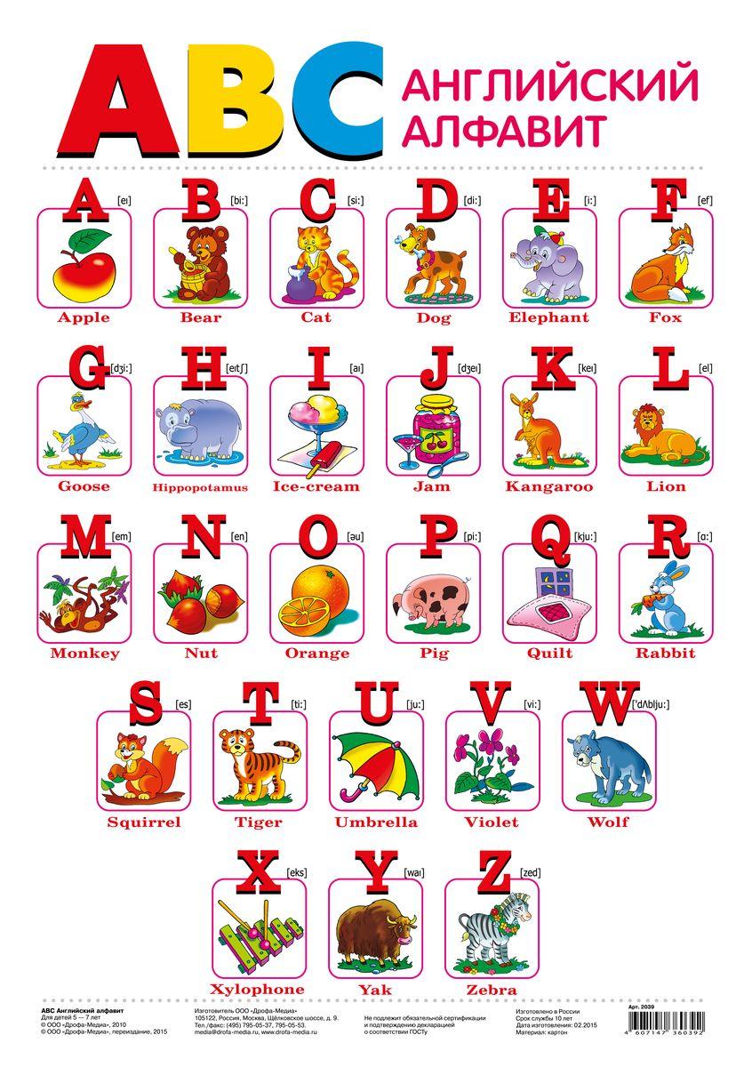 Дрофа-Медиа Обучающий плакат Английский алфавит