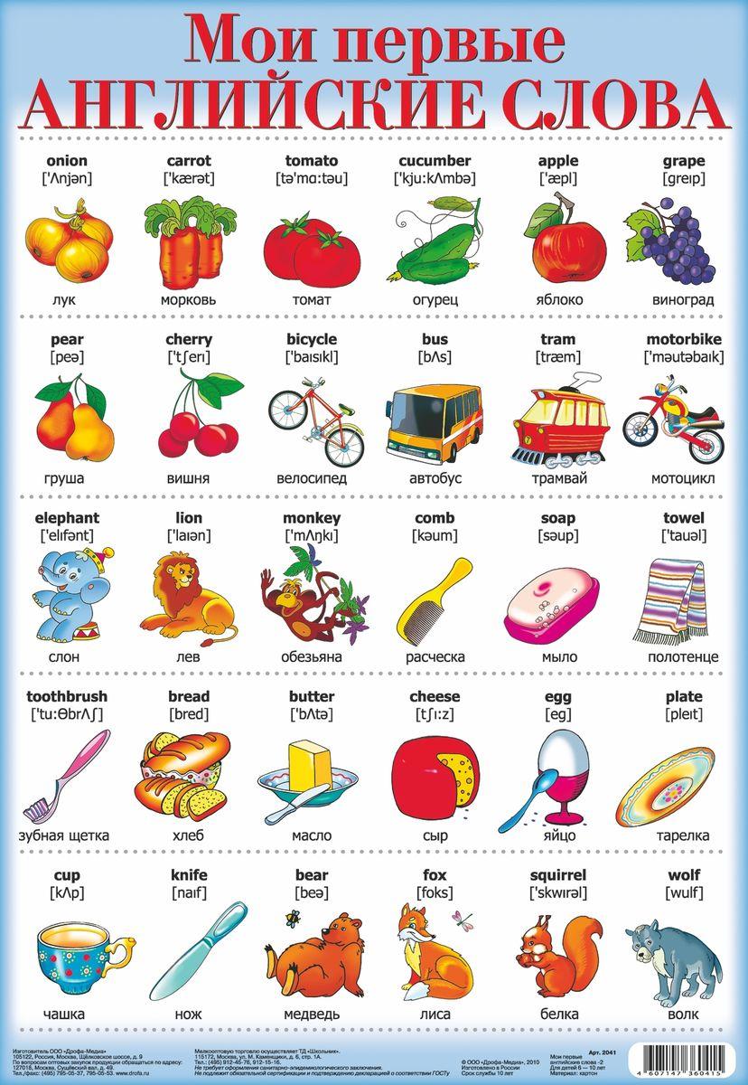 Английские слова с картинками и произношением для детей